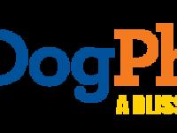 Dogphoria logo